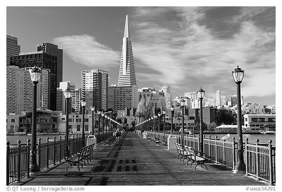 Black and white picture photo pier 7 and transamerica pyramid morning san francisco california usa