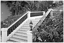 Stairs and garden, Nob Hill. San Francisco, California, USA ( black and white)