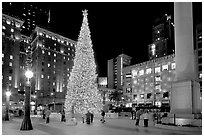 Christmas tree on Union Square at night. San Francisco, California, USA (black and white)