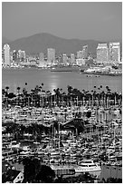 Marina, Shelter Island,  and skyline at dusk. San Diego, California, USA ( black and white)
