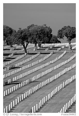 Fort Rosecrans National Cemetary, the third largest in the US. San Diego, California, USA (black and white)