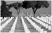 Rows of white gravestones and San Diego skyline, Point Loma. San Diego, California, USA ( black and white)