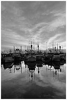 Fishing fleet at sunset. San Diego, California, USA (black and white)
