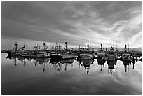 Fishing boats at sunset. San Diego, California, USA (black and white)