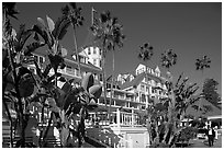 Del Coronado hotel framed by palm trees. San Diego, California, USA (black and white)