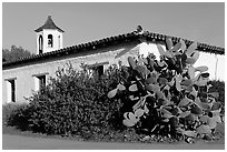 Cactus and adobe house, Old Town State Historic Park. San Diego, California, USA ( black and white)