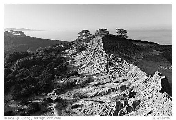 Eroded sandstone cliffs of Broken Hill,  Torrey Pines State Preserve. La Jolla, San Diego, California, USA (black and white)