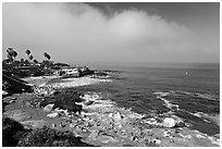 San Jolla Cove and seabirds. La Jolla, San Diego, California, USA ( black and white)