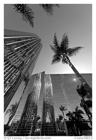 Looking upwards the Crystal Cathedral, with sun shining through the building. Garden Grove, Orange County, California, USA (black and white)