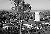 Eucalyptus tree and church. Laguna Beach, Orange County, California, USA (black and white)