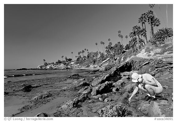 Women checking out a tidepool. Laguna Beach, Orange County, California, USA (black and white)
