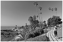 Woman jogging in Heisler Park, next to Ocean. Laguna Beach, Orange County, California, USA (black and white)