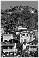 Houses on verdant hillside. Laguna Beach, Orange County, California, USA ( black and white)