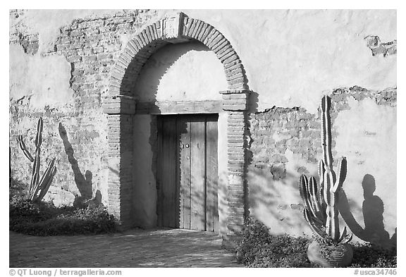 Cactus, and weathered facade. San Juan Capistrano, Orange County, California, USA (black and white)