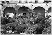 Garden in the entrance courtyard. San Juan Capistrano, Orange County, California, USA ( black and white)