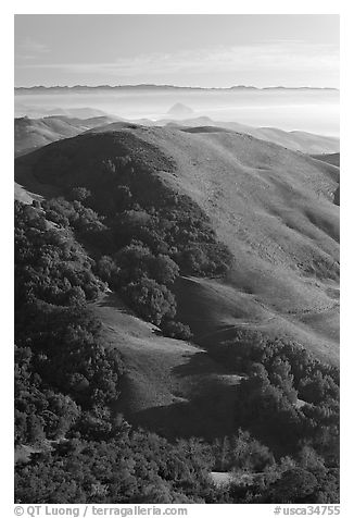 Hills, with coasline and Morro rock in the distance. Morro Bay, USA (black and white)