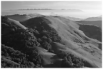 Green hills, with cost in the distance. California, USA (black and white)
