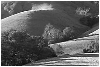 Pastures and hills. California, USA (black and white)