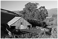 Barn and cattle-raising area. California, USA (black and white)