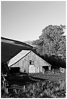 Old wooden barn. California, USA (black and white)