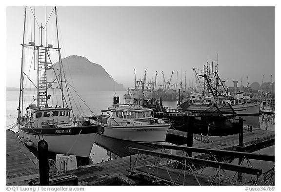 Harbor and Morro Rock, sunset. Morro Bay, USA (black and white)