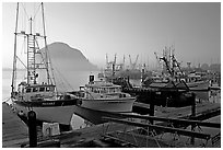 Harbor and Morro Rock, sunset. Morro Bay, USA ( black and white)