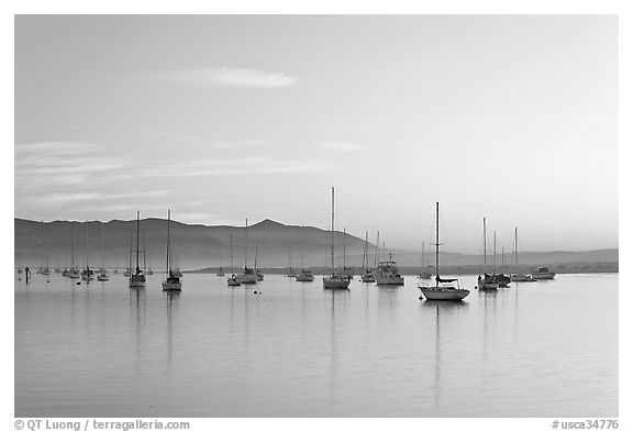 Yachts in calm Morro Bay harbor, sunset. Morro Bay, USA (black and white)