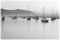 Yachts reflected in calm  Morro Bay harbor, sunset. Morro Bay, USA ( black and white)