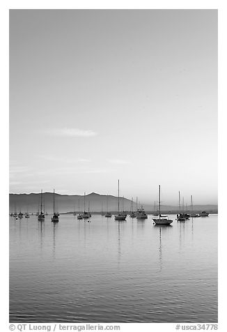 Yachts reflected in Morro Bay harbor, sunset. Morro Bay, USA (black and white)