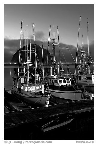 Lighted fishing boats and Morro Rock. Morro Bay, USA (black and white)