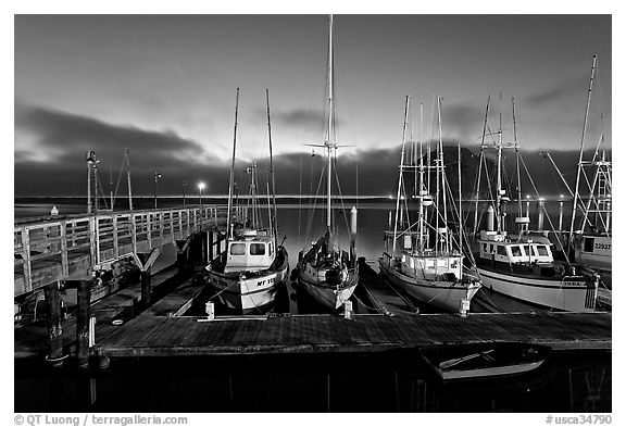 Harbor at dusk. Morro Bay, USA (black and white)