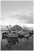 Fishing fleet and Morro Rock, sunrise. Morro Bay, USA ( black and white)