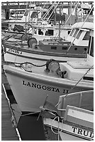 Close-up of colorful fishing boats. Morro Bay, USA ( black and white)