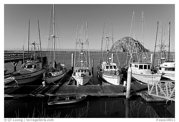 Harbor and Morro Rock, morning. Morro Bay, USA