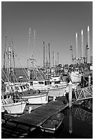 Fishing boats and power plant. Morro Bay, USA (black and white)