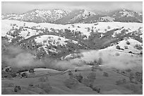 Snow on top of green hills of Mount Hamilton Range. San Jose, California, USA ( black and white)