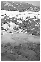 Green hills partly covered with snow, Mount Hamilton Range. San Jose, California, USA ( black and white)