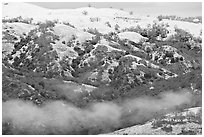 Snow and fog on Mount Hamilton Range. San Jose, California, USA ( black and white)