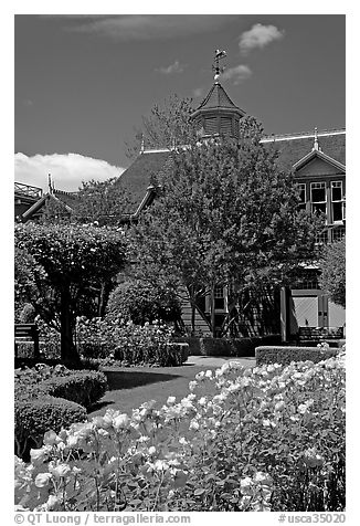 Backyard gardens. Winchester Mystery House, San Jose, California, USA (black and white)