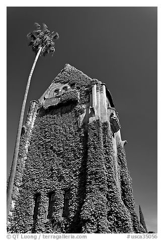 Ivy-covered Tower Hall, San Jose State University. San Jose, California, USA (black and white)