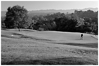 Stanford Golf Course. Stanford University, California, USA (black and white)