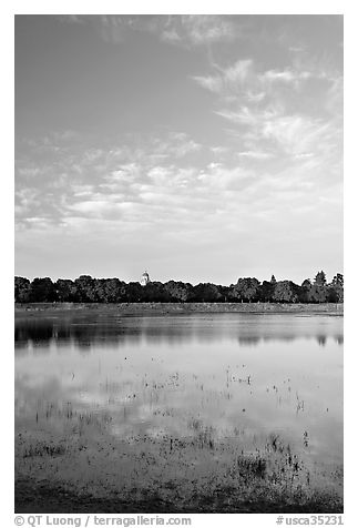 Lake Lagunata and Hoover tower in the spring. Stanford University, California, USA (black and white)