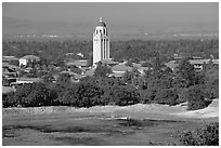 Campus, Hoover Tower, and Lake Lagunata. Stanford University, California, USA ( black and white)