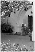 Orange tree and arch, Allied Arts Guild. Menlo Park,  California, USA (black and white)