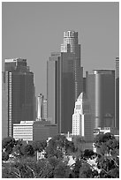 City Hall and high rise buildings. Los Angeles, California, USA ( black and white)