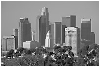 Skyline with city hall. Los Angeles, California, USA ( black and white)