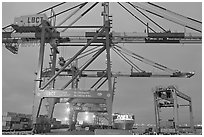 Cranes, Port of Los Angeles, sunset. Long Beach, Los Angeles, California, USA ( black and white)