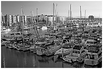 Marina at sunrise. Marina Del Rey, Los Angeles, California, USA (black and white)