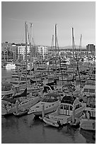 Yachts and marina at sunrise. Marina Del Rey, Los Angeles, California, USA (black and white)