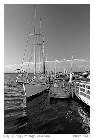 Yacht in Port of Redwood, late afternoon. Redwood City,  California, USA (black and white)